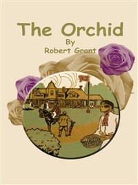 Cover The Orchid