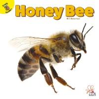 Cover Honey Bee