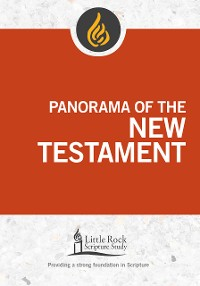 Cover Panorama of the New Testament