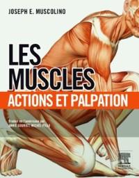 Cover Les muscles : actions et palpation