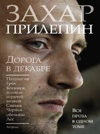 Cover Дорога в декабре (сборник)
