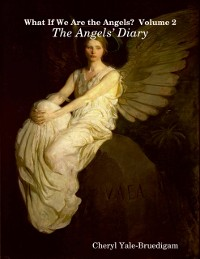 Cover What If We Are the Angels?  Volume 2: The Angels' Diary