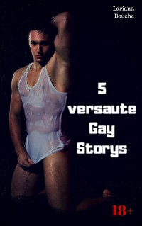 Cover 5 versaute Gay Storys