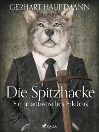 Cover Die Spitzhacke - Ein phantastisches Erlebnis