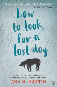 Cover How to Look for a Lost Dog