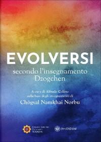 Cover Evolversi