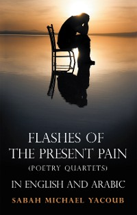 Cover Flashes of the Present Pain