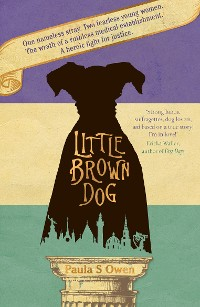 Cover Little Brown Dog