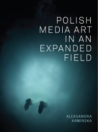 Cover Polish Media Art in an Expanded Field