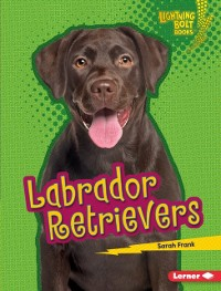 Cover Labrador Retrievers