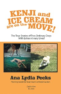 Cover Kenji and Ice Cream Are on the Move!