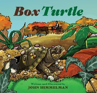 Cover Box Turtle
