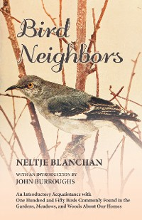 Cover Bird Neighbors - An Introductory Acquaintance with One Hundred and Fifty Birds Commonly Found in the Gardens, Meadows, and Woods About Our Homes