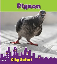 Cover Pigeon