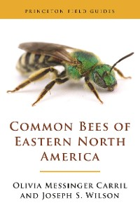 Cover Common Bees of Eastern North America