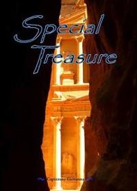 Cover Special Treasure