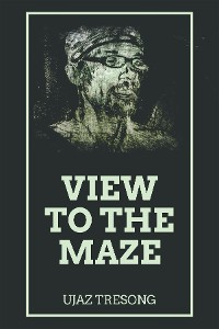 Cover View to the Maze