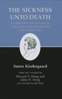 Cover Kierkegaard's Writings, XIX, Volume 19